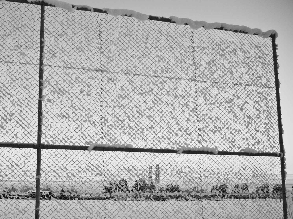 Gratuitous picture: frozen fence (Photo: Luis, click to enlarge).