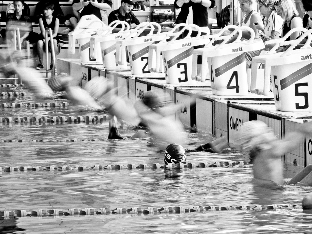 Start of backstroke heat (Photo: Luis, click to enlarge).